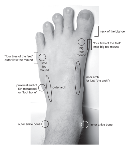 Parts of the Feet and Ankles | Technique